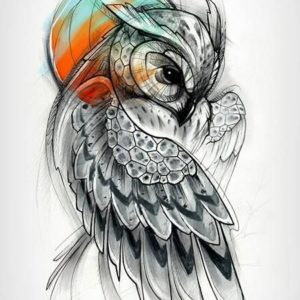 Owl design designs for women