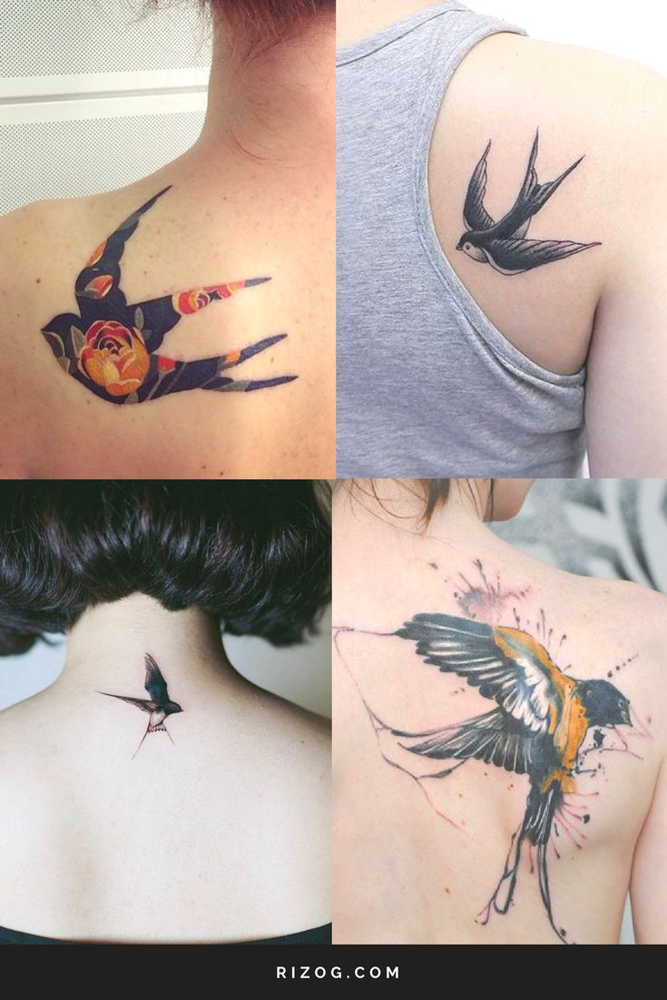 Swallows tattoos on the back for women